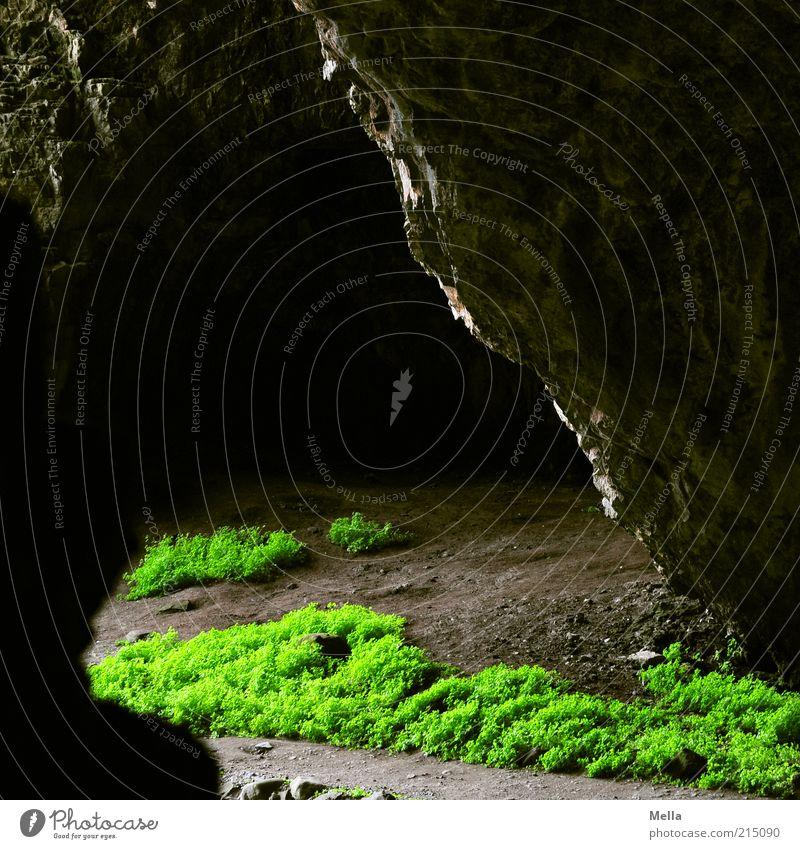 Ausweg Natur dunkel Gefühle Stein Wege & Pfade Stimmung Umwelt Felsen Wachstum natürlich geheimnisvoll leuchten Urelemente bizarr Surrealismus