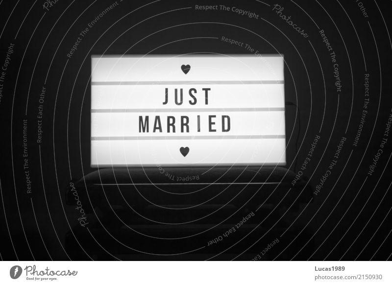 Just Married Party Veranstaltung Musik Feste & Feiern Flirten Tanzen Hochzeit Paar Ehe Just married Hochzeitspaar Hochzeitszeremonie Hochzeitfeier Freude frisch