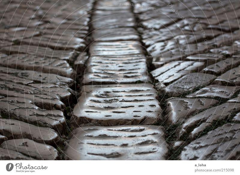 Retrobodenbelag alt Straße dunkel grau Stein Wege & Pfade glänzend authentisch unten leuchten Vergangenheit trocken Pflastersteine Fuge Rovinj