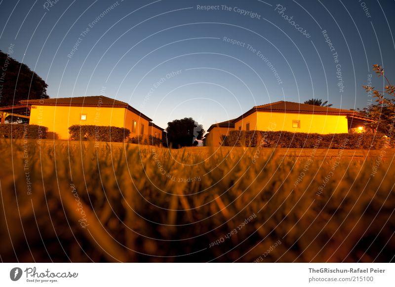 A House in the Mittelhoferstreet:-) blau Ferien & Urlaub & Reisen schwarz Haus gelb dunkel Wiese Fenster Gras Wärme braun gold Tourismus Hecke Israel Zeit