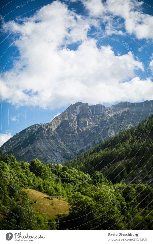 Provence de Rhone Ferien & Urlaub & Reisen Abenteuer Ferne Expedition Natur Landschaft Himmel Wolken Frühling Sommer Schönes Wetter Pflanze Baum Wald Hügel