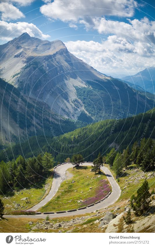 Motorradfahrerparadies Himmel Natur Ferien & Urlaub & Reisen Pflanze blau Sommer grün Landschaft Wolken Wald Berge u. Gebirge Straße gelb Frühling Tourismus
