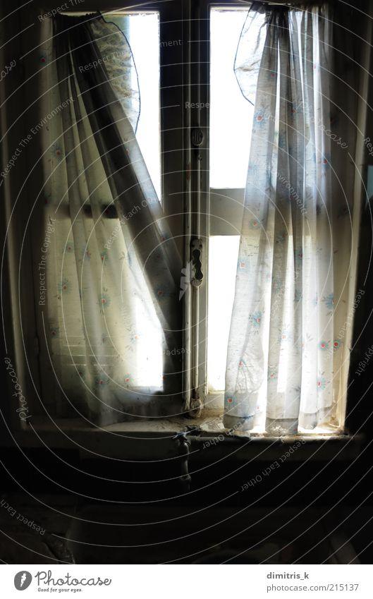 zerklüftete Vorhänge Küche Ruine Gebäude Architektur Fenster alt dreckig dunkel hell Einsamkeit Zeit Waschbecken Gardine fetzig Vorhang Licht Verwesung