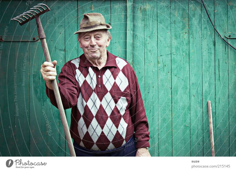 Stelldichhin Mensch Mann alt grün Senior Wand Garten maskulin Freizeit & Hobby Hut Freundlichkeit Großvater Pullover Ruhestand Lächeln Porträt