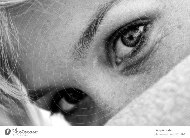 annusch3 Frau Mensch Jugendliche Gesicht Auge Erholung feminin blond Erwachsene beobachten geheimnisvoll verführerisch Junge Frau Blick 18-30 Jahre