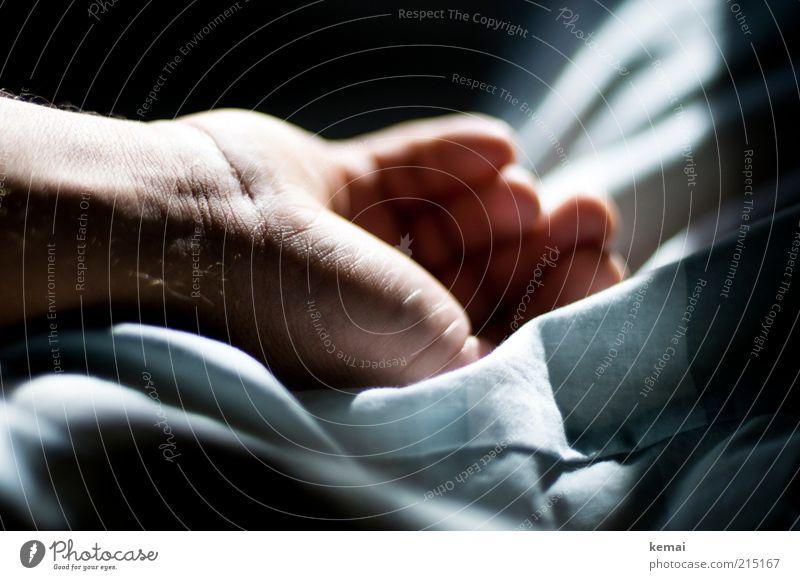Ruhende Hand Mensch Mann ruhig Leben Erholung Haut Erwachsene Wohnung maskulin Finger schlafen Bett liegen Häusliches Leben Hautfalten