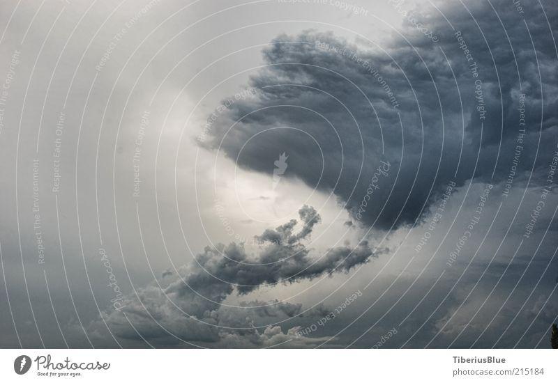 Vor dem Sturm Himmel blau Wolken dunkel grau wild bedrohlich Unwetter Gewitter Gewitterwolken Natur Silhouette Wolkenhimmel