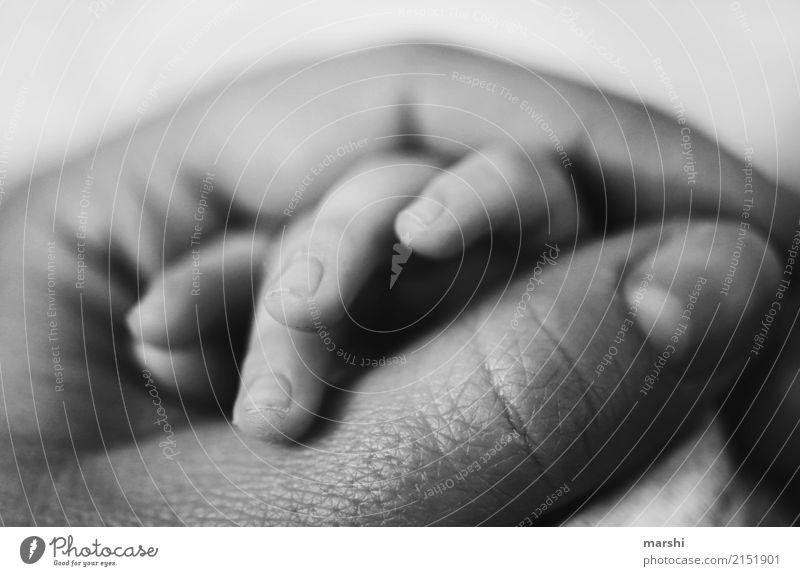 forever Mensch Kind Baby Frau Erwachsene Eltern Mutter Hand Finger 2 0-12 Monate Gefühle Stimmung Vertrauen Sicherheit Schutz Geborgenheit Zusammensein Liebe