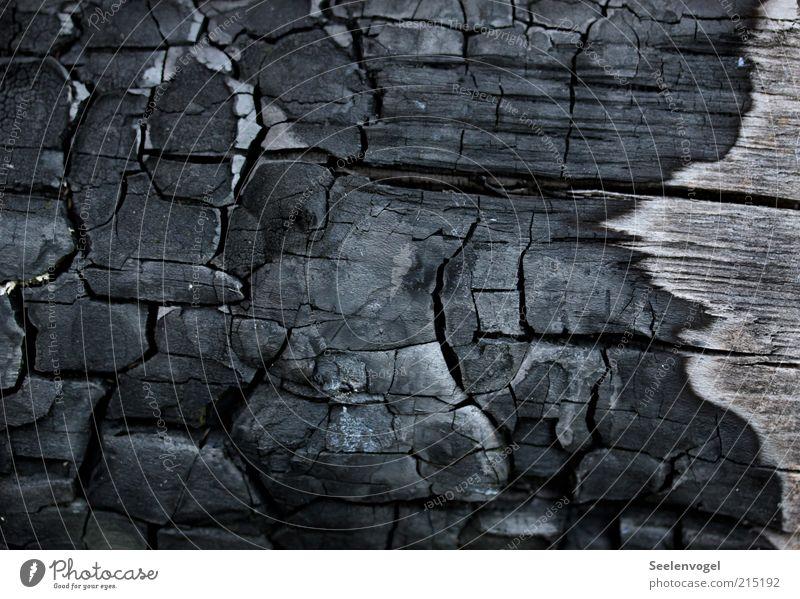 Abgebrannt schwarz Holz Wärme Linie Hintergrundbild bedrohlich Vergänglichkeit brennen Riss Zerstörung Oberfläche Makroaufnahme Schaden Brennholz Strukturen & Formen vernichten