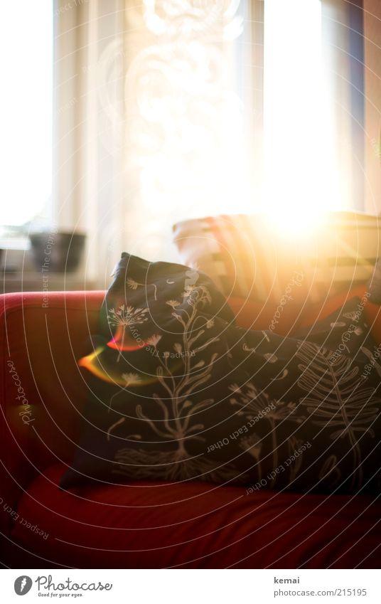Nachmittagssonne Stil ruhig Häusliches Leben Wohnung Innenarchitektur Dekoration & Verzierung Möbel Sofa Raum Wohnzimmer Kissen Gardine Rollo Schiebegardine