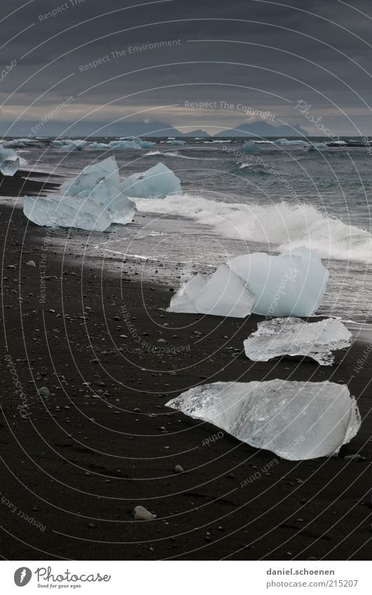 schwimmen nicht für Warmduscher Natur Strand Ferien & Urlaub & Reisen Meer Ferne kalt dunkel Landschaft Umwelt Sand Küste Wetter Wellen Eis Wind Tourismus