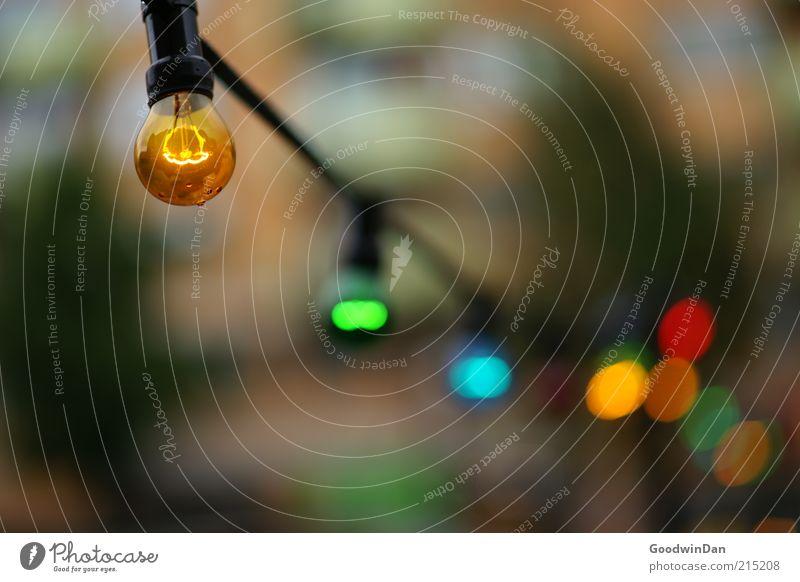 Lichterkette Glühbirne Stimmung Farbfoto Außenaufnahme Menschenleer Dämmerung Kunstlicht Schwache Tiefenschärfe Hintergrundbild Veranstaltungsbeleuchtung