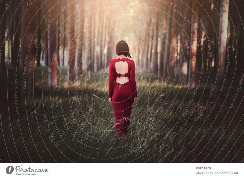 hübsche junge Frau im Wald Mensch Natur Ferien & Urlaub & Reisen Jugendliche Junge Frau schön Einsamkeit Erwachsene Lifestyle Traurigkeit Liebe Gefühle Stil