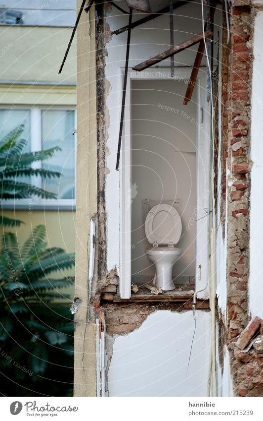 Stilles Örtchen Baustelle Haus Mauer Wand grün weiß Zerstörung Demontage Wien Abrissgebäude Toilette kaputt Ziegelbauweise offen Farbfoto Außenaufnahme