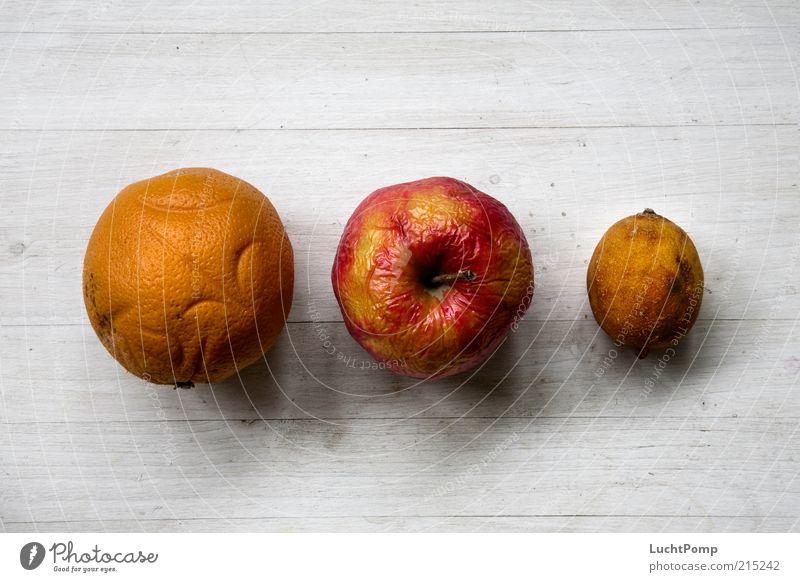 Rentner-Gang alt rot gelb Holz Orange orange Frucht rund verfaulen Vergänglichkeit Apfel Zitrone vertrocknet verdorben