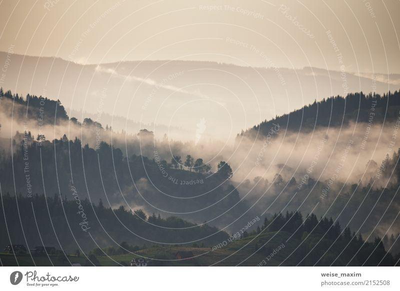 Berglandschaft kurz nach Regen. Nebelwolken Ferien & Urlaub & Reisen Tourismus Ausflug Abenteuer Ferne Freiheit Sommer Sommerurlaub Berge u. Gebirge wandern