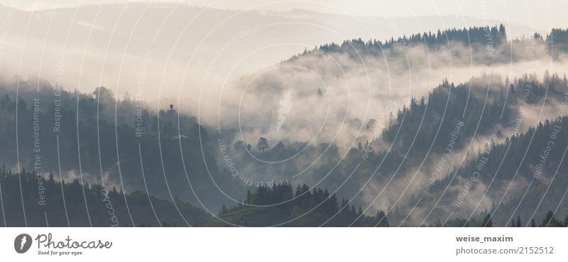 Berglandschaft kurz nach Regen. Nebelwolken Natur Ferien & Urlaub & Reisen blau Sommer grün Landschaft Baum Wolken Ferne Wald Berge u. Gebirge dunkel Herbst