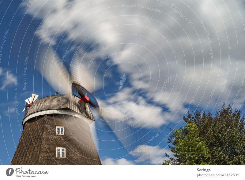 Schwungvoll Bauwerk Gebäude Architektur Dach Sehenswürdigkeit Denkmal drehen Windmühle Windmühlenflügel Farbfoto mehrfarbig Außenaufnahme Detailaufnahme