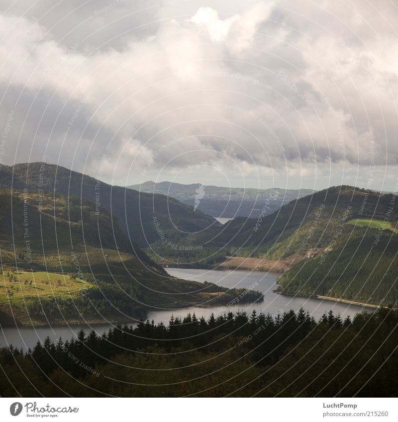 Hinter den 7 Bergen Himmel Pflanze Wolken ruhig Wald Landschaft Wiese Berge u. Gebirge Freiheit Regen Fluss Hügel Unwetter Norwegen schlechtes Wetter Fichte