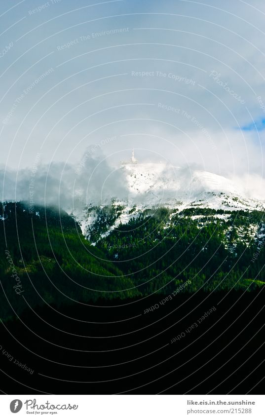 Zucker auf den Bergen III Ferien & Urlaub & Reisen Tourismus Ausflug Ferne Freiheit Schnee Berge u. Gebirge Umwelt Landschaft Wolken Sommer Wetter Nebel Wald