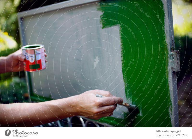 do it yourself heimwerken Renovieren Arme Hand 1 Mensch grün anstrengen streichen Farbe Farbtopf Pinsel Pinselstrich Gartentor machen Farbschicht