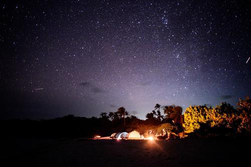 Tropennacht Ferien & Urlaub & Reisen Abenteuer Freiheit Camping Nachthimmel Stern Palme Strand Zusammensein Erholung träumen Lagerfeuerstimmung Aussteiger