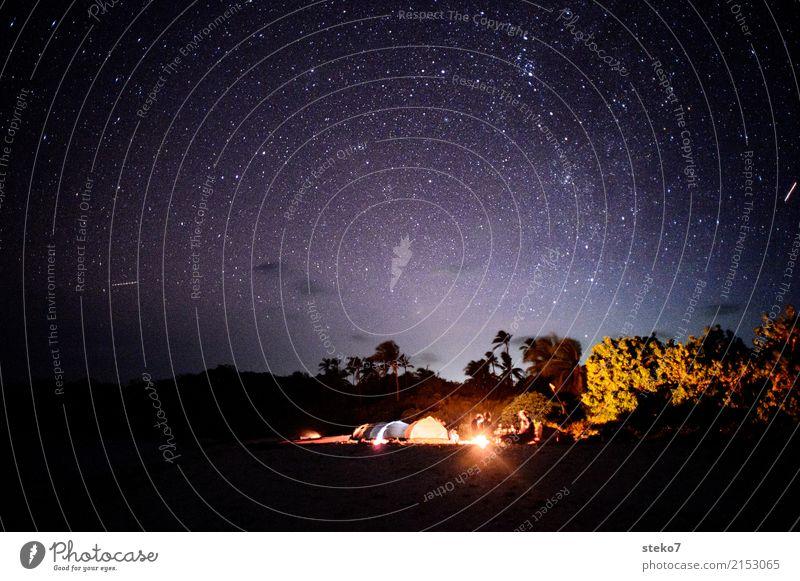 Tropennacht Ferien & Urlaub & Reisen Erholung Einsamkeit Strand Freiheit Zusammensein träumen Abenteuer Stern Palme Camping Nachthimmel Philippinen Aussteiger