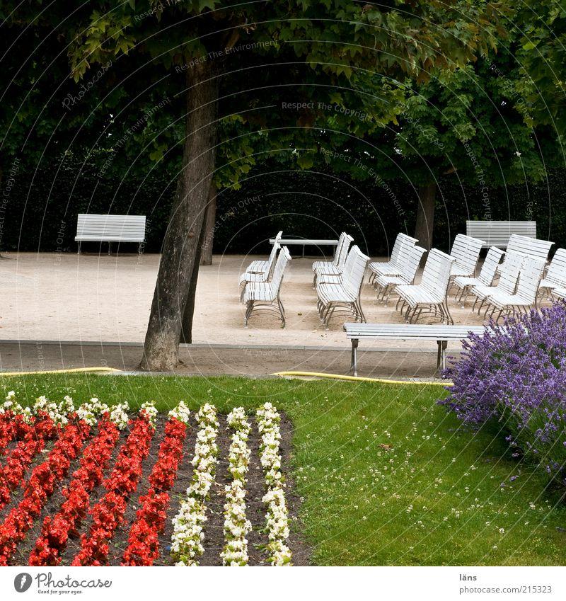 Rasiersitz Baum Blume ruhig Park leer Ordnung Rasen Bank Freizeit & Hobby viele Garten Sitzreihe parallel Inspiration Einigkeit