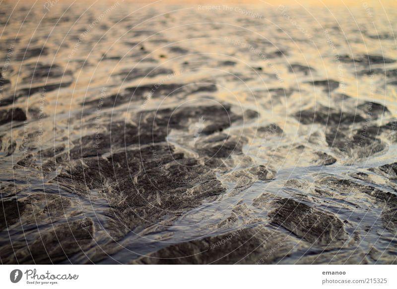 small rivers at low tide Ferne Sommer Strand Meer Natur Landschaft Erde Sand Wasser Wetter Küste Fluss kalt nass Atlantik fließen Rinnsal flach Ebbe Gezeiten