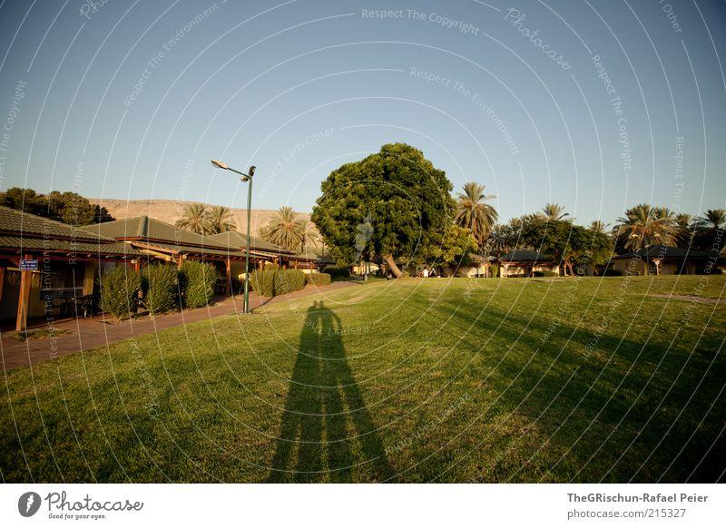 Schattenspiele Mensch Baum grün blau Freude Haus Ferne Wiese Gras Paar Freundschaft Zusammensein Dach heiß Palme Schönes Wetter