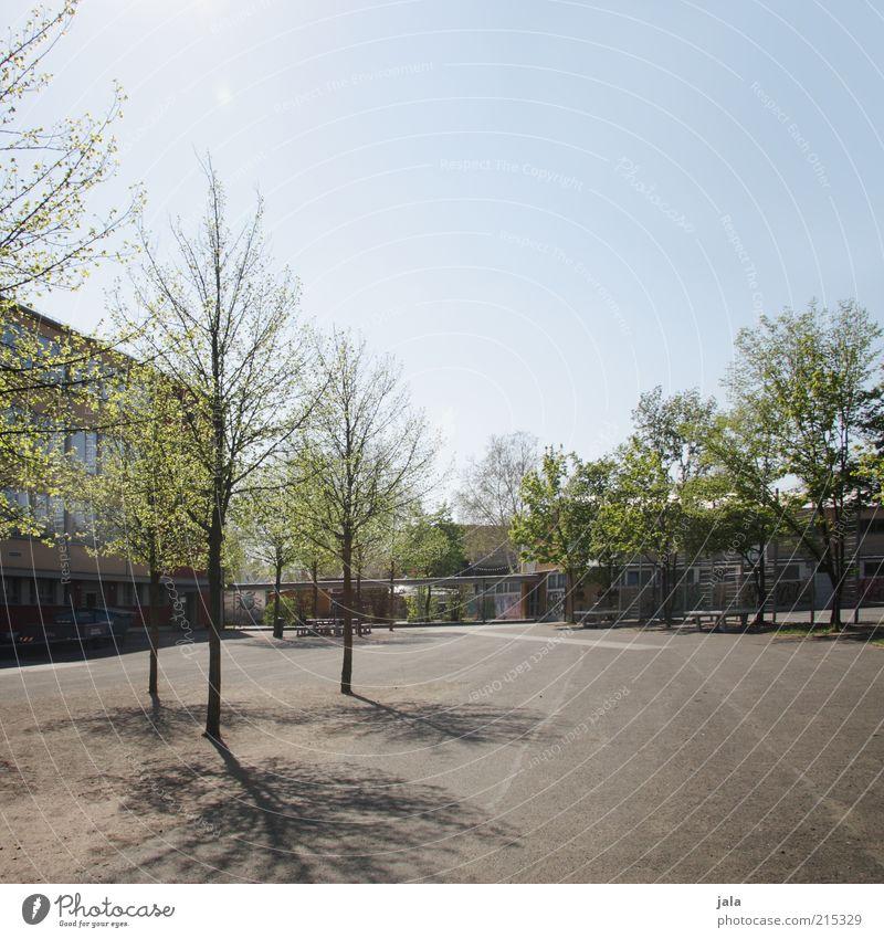 back to school Schule Schulgebäude Schulhof Himmel Pflanze Baum Haus Platz Bauwerk Gebäude Farbfoto Außenaufnahme Menschenleer Textfreiraum oben Tag Licht