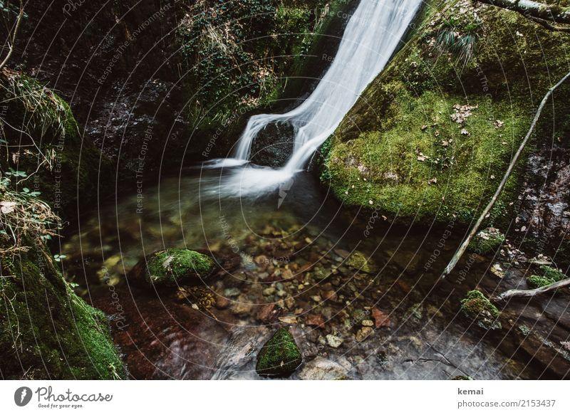 Kleiner süßer Wasserfall Natur Ferien & Urlaub & Reisen schön grün Erholung ruhig Leben Umwelt Freiheit Felsen Ausflug Zufriedenheit Freizeit & Hobby wild