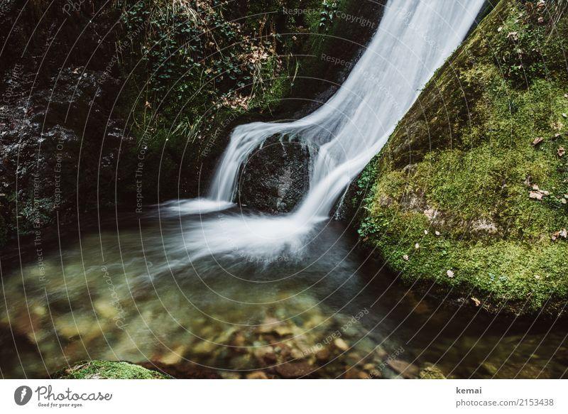 Wasserfall Leben harmonisch Wohlgefühl Zufriedenheit Sinnesorgane Erholung ruhig Abenteuer Freiheit wandern Natur Sommer Schönes Wetter Moos Felsen Stein