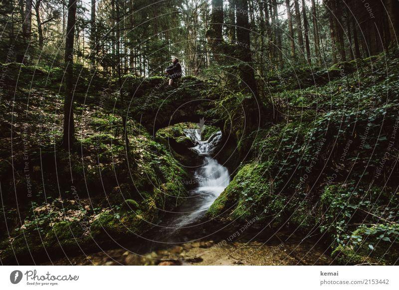 Die Ruhe genießen Mensch Natur grün Baum Erholung ruhig Wald Lifestyle Leben Freiheit Felsen Zufriedenheit Freizeit & Hobby wandern sitzen authentisch