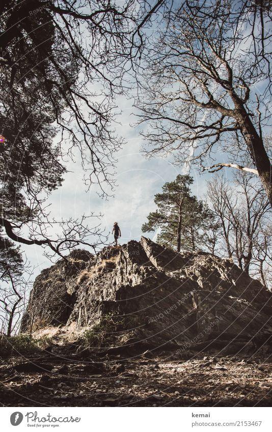 Oben auf dem Fels Mensch Himmel Natur Sommer Baum Erholung Wolken ruhig Ferne Lifestyle Leben Freiheit Felsen oben Ausflug Zufriedenheit
