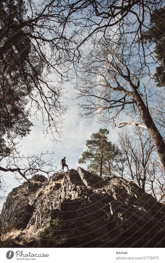 Gipfelstümer Mensch Himmel Natur Baum Erholung Wolken ruhig Lifestyle Leben außergewöhnlich Freiheit Felsen Zufriedenheit Freizeit & Hobby wandern Kraft