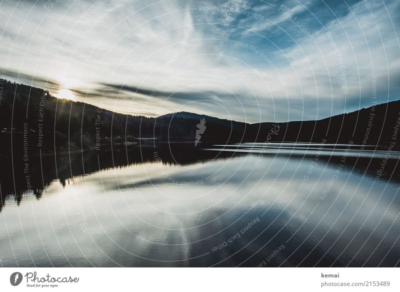 Black and blue forest Himmel Natur Ferien & Urlaub & Reisen blau Sommer schön Wasser Landschaft Erholung Wolken ruhig Ferne Wald dunkel schwarz Freiheit