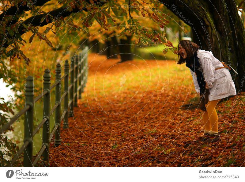 Herbsthungrig Frau Mensch Natur Jugendliche Blatt Herbst feminin See lustig Erwachsene Umwelt Bekleidung Klima Jacke brünett
