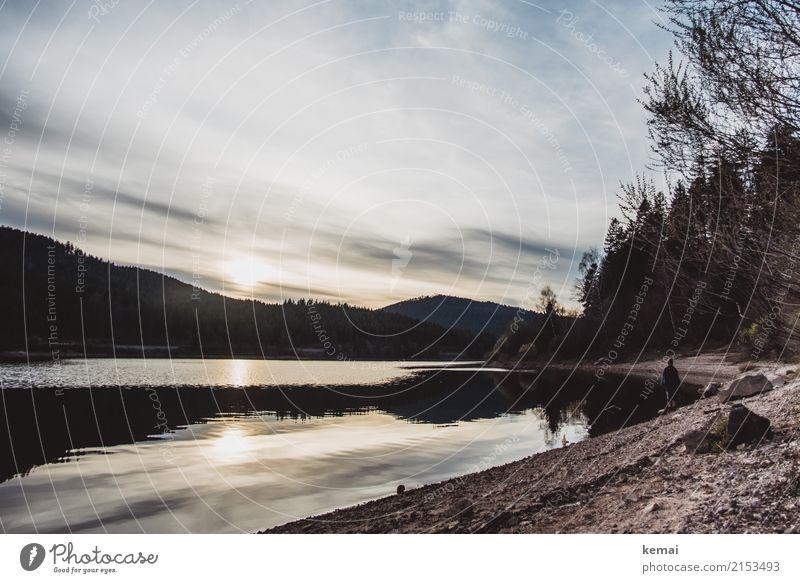Abends am See Mensch Himmel Natur Wasser Landschaft Baum Erholung Einsamkeit Wolken ruhig Ferne Lifestyle Leben Traurigkeit natürlich Freiheit