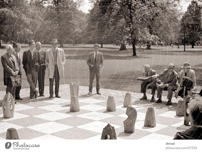 Schachspiel Spielen Menschengruppe Publikum Schachbrett Schachfigur Spielfigur Brettspiel