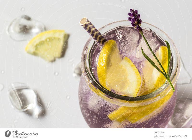 Detoxgetränk mit Lavendel und Zitrone Frucht Kräuter & Gewürze Eiswürfel Bioprodukte Vegetarische Ernährung Diät Getränk Erfrischungsgetränk Trinkwasser Glas