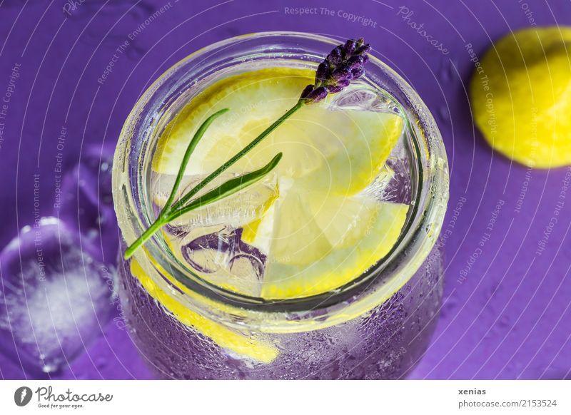 Eisgekühltes Zitronenwasser mit Lavendel Frucht Kräuter & Gewürze Eiswürfel Bioprodukte Vegetarische Ernährung Getränk Erfrischungsgetränk Trinkwasser Limonade