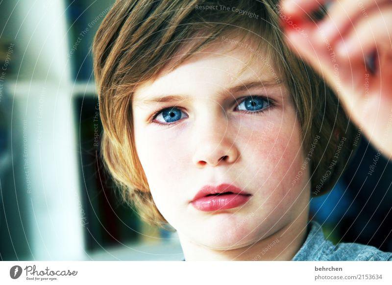 fragend Junge Familie & Verwandtschaft Kindheit Körper Haut Kopf Haare & Frisuren Gesicht Auge Nase Mund Lippen 1 Mensch 3-8 Jahre beobachten Kommunizieren