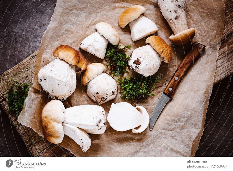 Steinpilze Gesunde Ernährung Wald Speise Foodfotografie Essen Herbst Lebensmittel frisch genießen lecker Pilz aromatisch rustikal Pilzhut essbar Pilzsucher