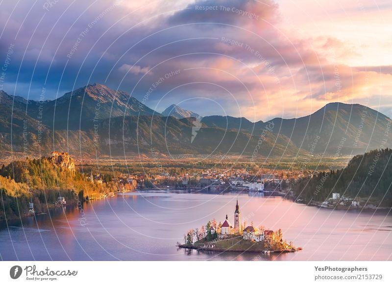 Lake Bled und seine Insel bei Sonnenaufgang ruhig Ferien & Urlaub & Reisen Tourismus Sightseeing Winter Winterurlaub Berge u. Gebirge Natur Landschaft Baum Wald