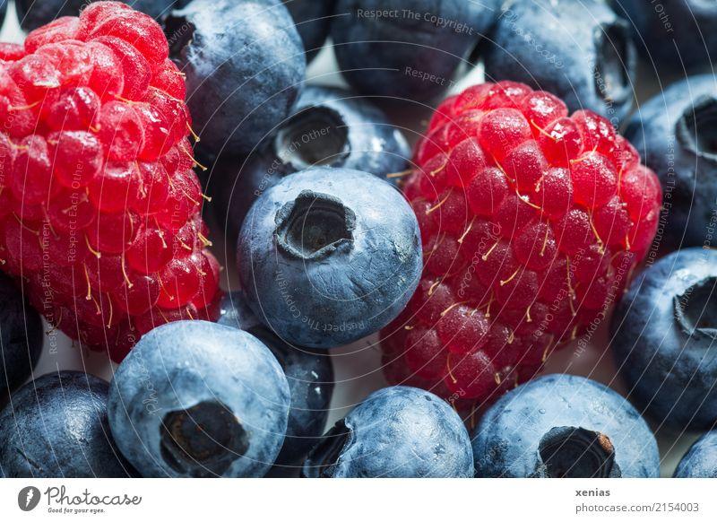 Himbeeren mit Blaubeeren Gesunde Ernährung rot schwarz Gesundheit Frucht frisch süß lecker Ernte Bioprodukte Vegetarische Ernährung Rohkost