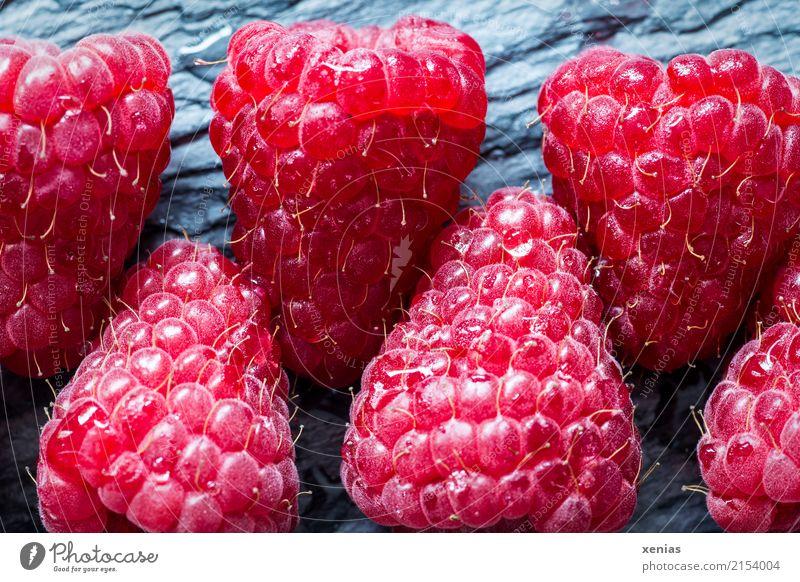 Himbeeren auf Schieferplatte Frucht Bioprodukte Vegetarische Ernährung Gesunde Ernährung Sommer Herbst frisch Gesundheit lecker süß grau rot Vitamin Reihe