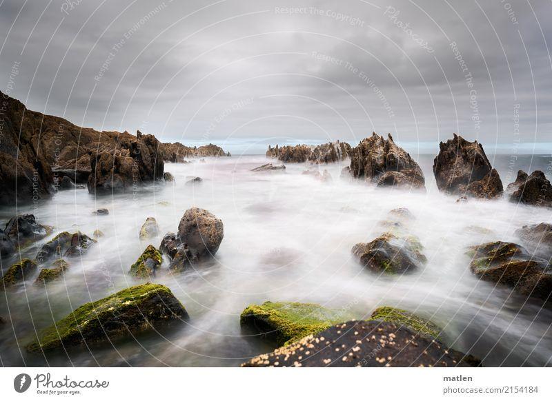 die Flut kommt Natur Landschaft Himmel Wolken Horizont Sommer Wetter schlechtes Wetter Wind Felsen Wellen Küste Strand Meer wild Atlantik Algen Farbfoto