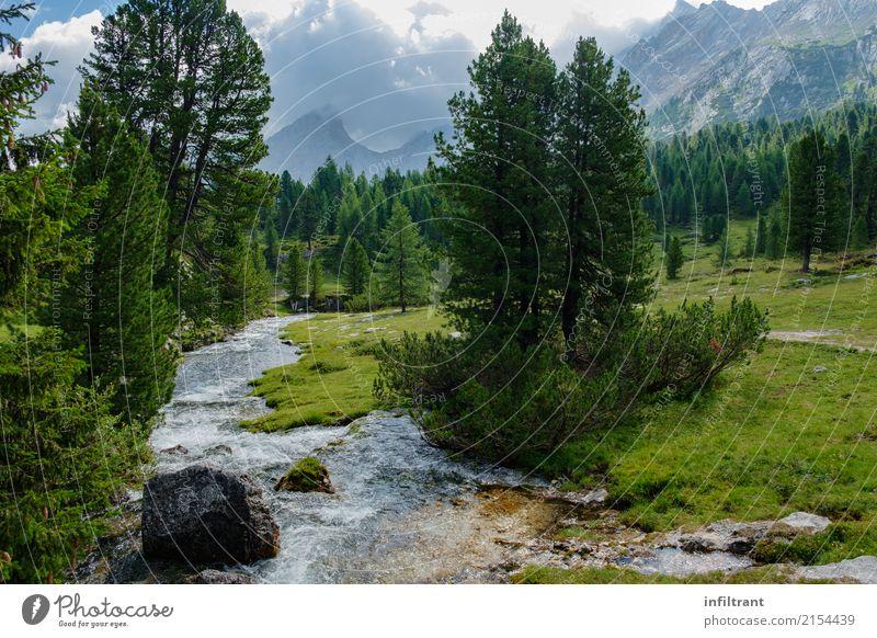 In den Dolomiten Ferien & Urlaub & Reisen Freiheit Sommer Berge u. Gebirge Landschaft Wasser Wolken Baum Wiese Wald Hügel Felsen Alpen Bach Italien ästhetisch