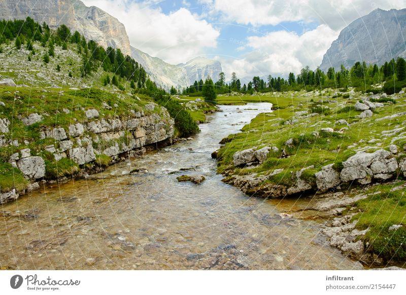 In den Dolomiten Ferien & Urlaub & Reisen Freiheit Sommer Berge u. Gebirge wandern Umwelt Natur Landschaft Wolken Wiese Wald Felsen Alpen Bach Italien nass